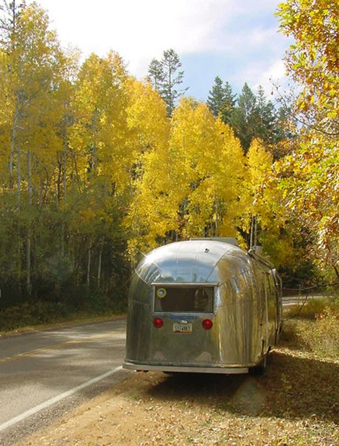 Fall in Arizona's White Mountains.